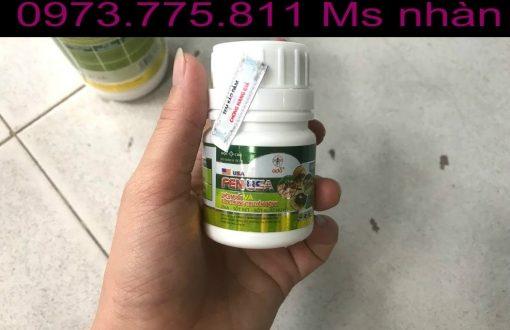 FenUSA 120SC thuốc diệt muỗi và côn trùng từ Mỹ