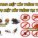 Công ty diệt côn trùng tại TPHCM